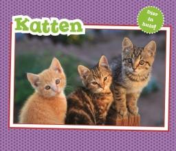 Christina  Gardeski Katten, Vertel Maar