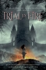 Angelini, Josephine,Trial by Fire