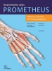 Michael  Schünke, Erik  Schulte, Udo  Schumacher,Prometheus Anatomische atlas 1