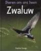Savage,De zwaluw