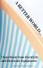 A.M. Schmitt ,A Better World through applications of CEEE
