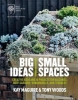 Maguire Kay, Rhs Big Ideas, Small Spaces