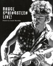 Janet Macoska, Bruce Springsteen: Live in the Heartland