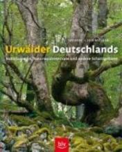 Sperber, Georg Urwälder Deutschlands
