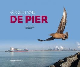 Roy Slaterus Jelle van der Helm  Dick Groenendijk, Vogels van de Pier