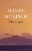 Harry  Mulisch,De pupil