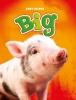 Christina  Leaf ,Big, Baby-dieren