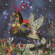 Christian,Lacroix Crazy Horse Boxed Notecards