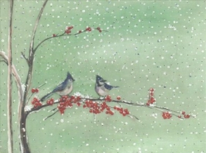 Birds & Berries Deluxe Holiday Cards