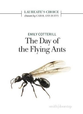 Emily Cotterill,The Day of the Flying Ants