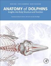 Bruno Cozzi,   Stefan Huggenberger,   Helmut Oelschlager Anatomy of Dolphins