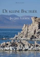 Jacques  Verbeek De kleine Bactrir