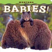 Hahn, Jason Montana Babies!