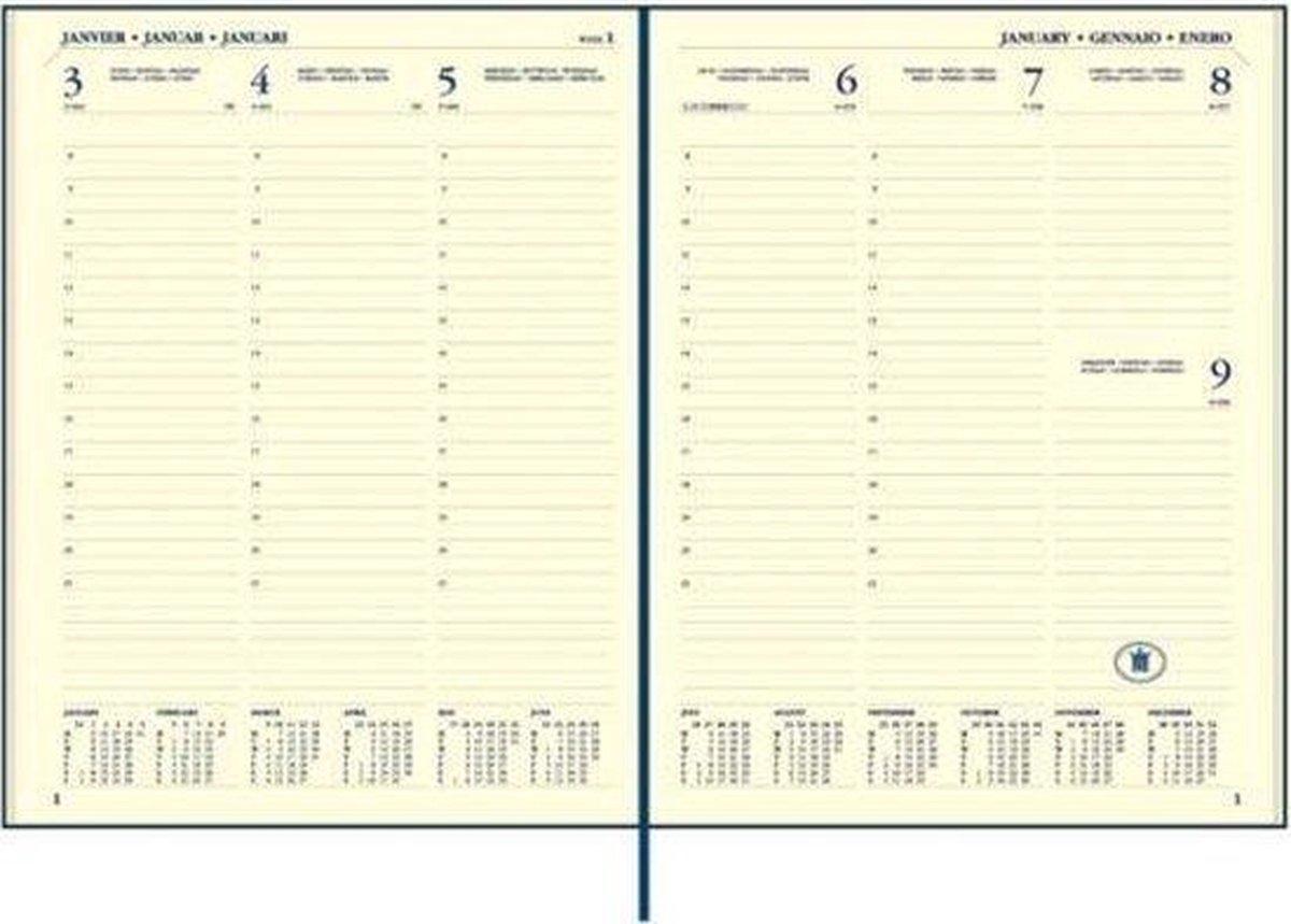 ,Ryam executive agenda 2020-2021 18 maanden 170x220 blauw