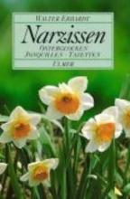 Erhardt, Walter Narzissen