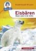 Herbst, Nicola,Eisbären - Raues Leben in der Arktis
