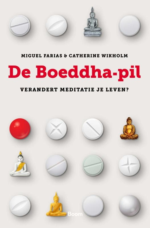Miguel Farias, Catherine Wikholm,De Boeddha-pil