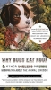 Gould, Francesca,   Haviland, David,Why Dogs Eat Poop, and Other Useless or Gross Information About the Animal Kingdom