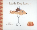 ,Little dog lost