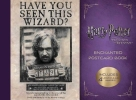 Insight Editions,Harry Potter and the Prisoner of Azkaban Enchanted Postcard Book