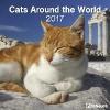 ,Cats Around the World 2017 Brosch�renkalender