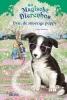 <b>Daisy  Meadows</b>,Evie, de snoezige puppy