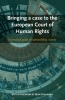 Bringing a case to the European Court of Human Rights,a practical guide on admissibility criteria