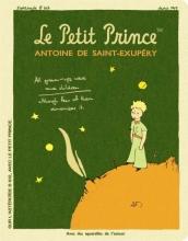Le Petit Prince Stitch Large Blank Notebook