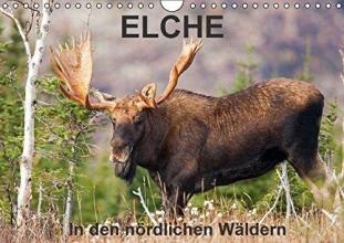 Henry, Philippe ELCHE In den nördlichen Wäldern (Wandkalender 2016 DIN A4 quer)