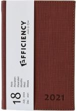 85319950.br , Ryam efficiency agenda 18 mnds 2020-2021 a6 bruin