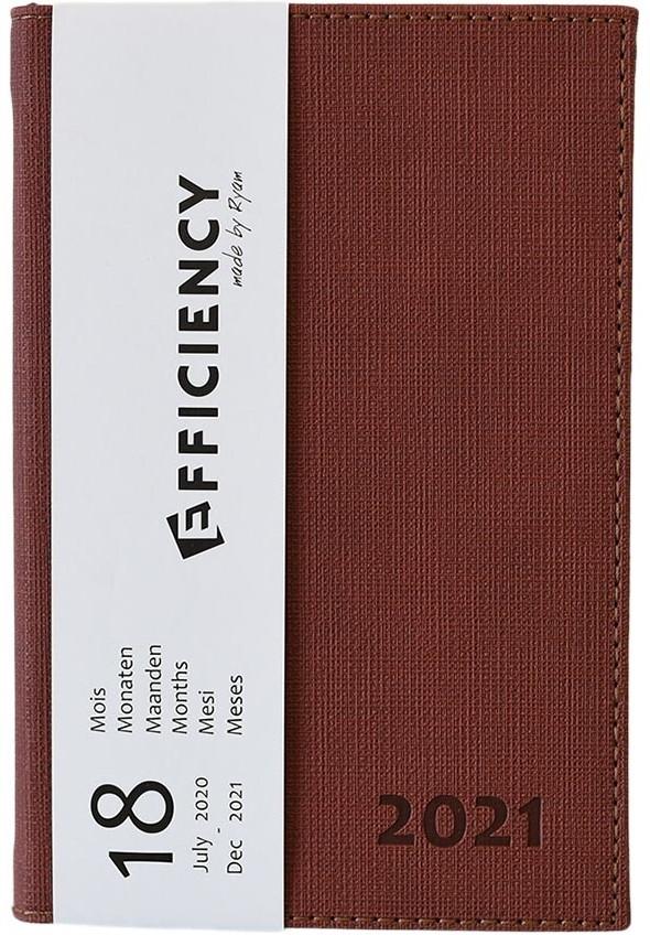 85319950.br,Ryam efficiency agenda 18 mnds 2020-2021 a6 bruin