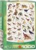 <b>Eur-6000-1259</b>,Birds - puzzel - eurographics - 1000 - 48 x 68