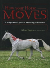 Gillian Higgins How Your Horse Moves