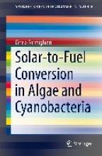 Formighieri, Cinzia Solar-to-Fuel Conversion in Algae and Cyanobacteria
