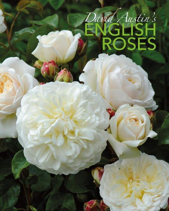 David Austin,David Austin`s English Roses