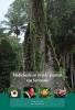 Tinde Andel,Medicinale en rituele planten van Suriname