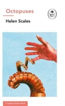 Helen Scales Octopuses: A Ladybird Expert Book