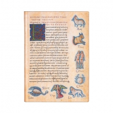 Pb fb7289-8 , Paperblanks notitieboek softcover midi lijn de sideribus tractatus astronomica