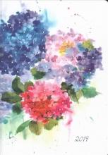 Hydrangeas Weekly Planner 2019 Calendar