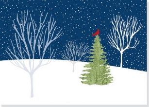 Midnight Cardinal Holiday Cards