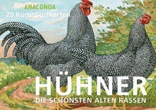 Anaconda Postkartenbuch Hühner