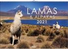 Lamas und Alpakas 2021, Exotische Trendtiere mit Charakter