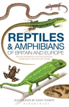 Jeroen Speybroeck,   Wouter Beukema,   Bobby Bok,   Janneke van der Voort Field Guide to the Amphibians and Reptiles of Britain and Europe