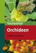 Röllke, Lutz Taschenatlas Orchideen