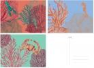 ,&INK Wenskaarten set - 15 stuks - Aqua - blanco
