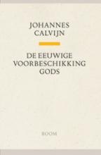 Johannes Calvijn , De eeuwige voorbeschikking Gods