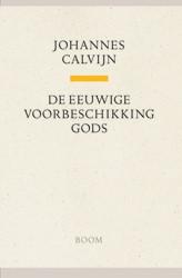 Johannes Calvijn,De eeuwige voorbeschikking Gods