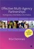 Cheminais, Rita, Effective Multi-agency Partnerships