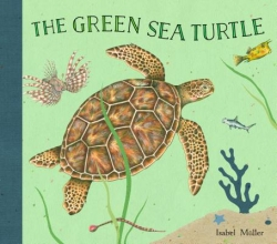 Muller, Isabel The Green Sea Turtle