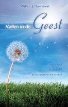 Willem J. Ouweneel , Vallen in de Geest